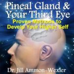 Pineal Gland Your Third Eye